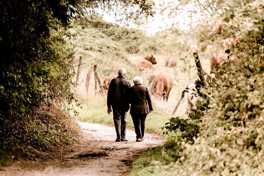 Ældre mennesker går i solnedgangen